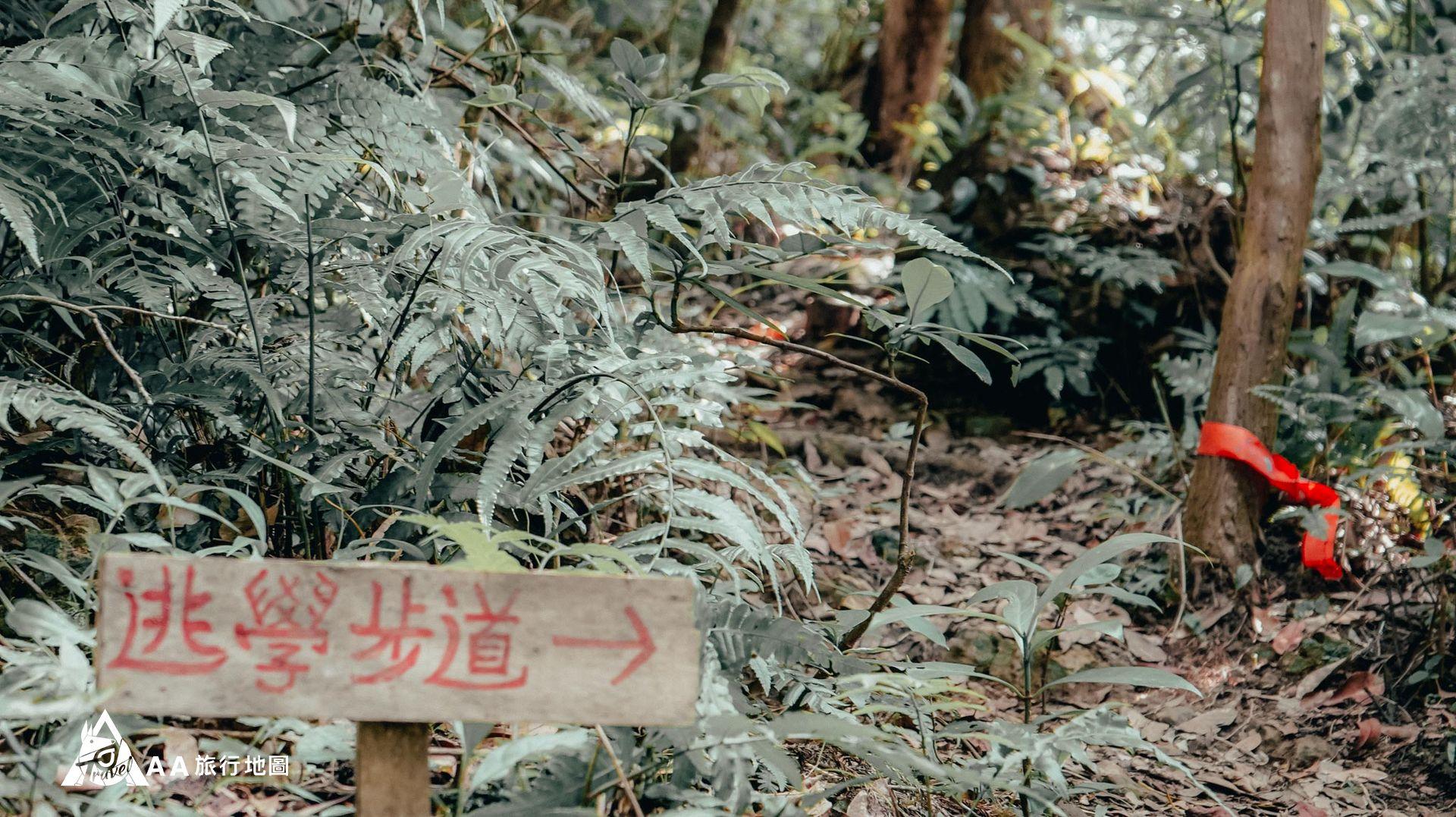 大山北月 後山上還有一個逗趣的牌子寫著逃學步道