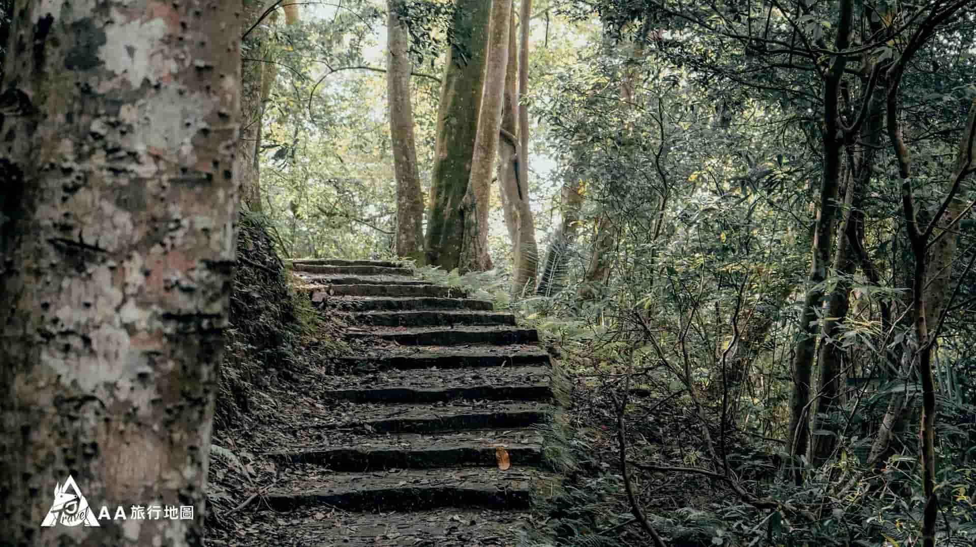 大山北月 後山步道上去可以吸收芬多精,很多登山客都會來 這邊爬山呢